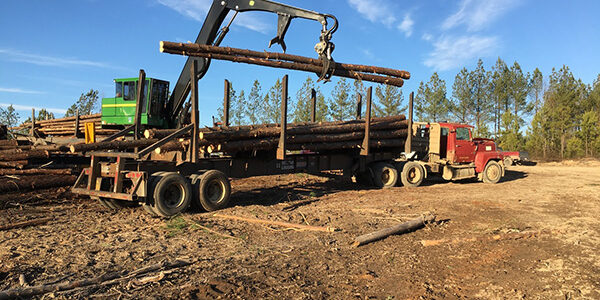 Roseburg Forest Products Announces Construction of New Sawmill